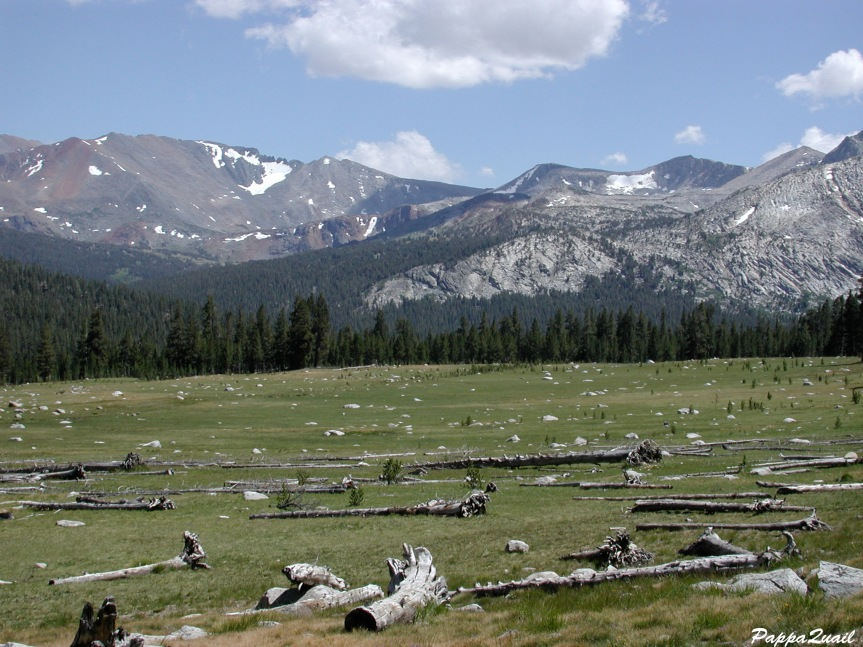 Yosemite view 2001