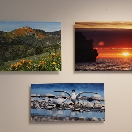 pictures on wall 2